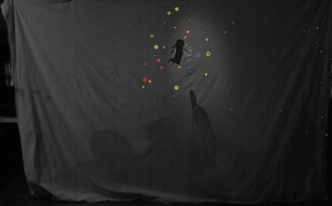shadow-sparkles
